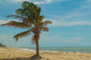 Praia-de-Cumbuco-BR-Lazer